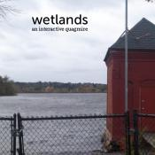 Wetlands small cover.jpg