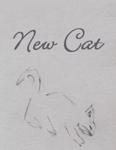 New Cat cover.png